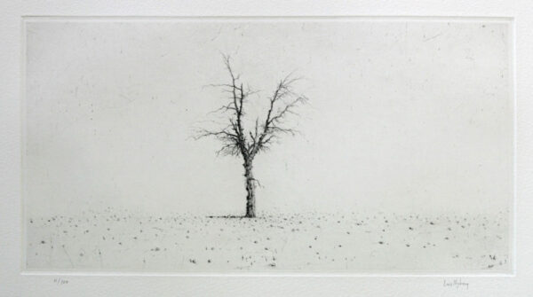 Drypoint Olive Tree by Lars Nyberg.