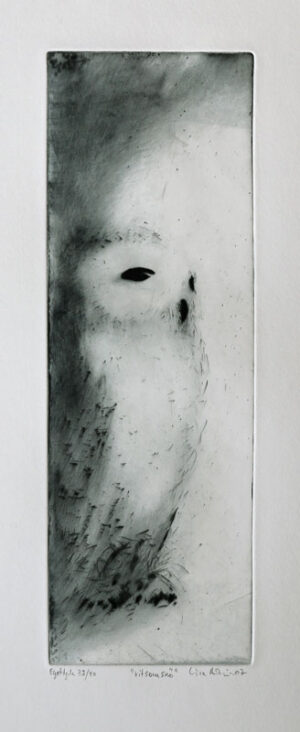 Drypoint White as Snow by Lisa Andrén