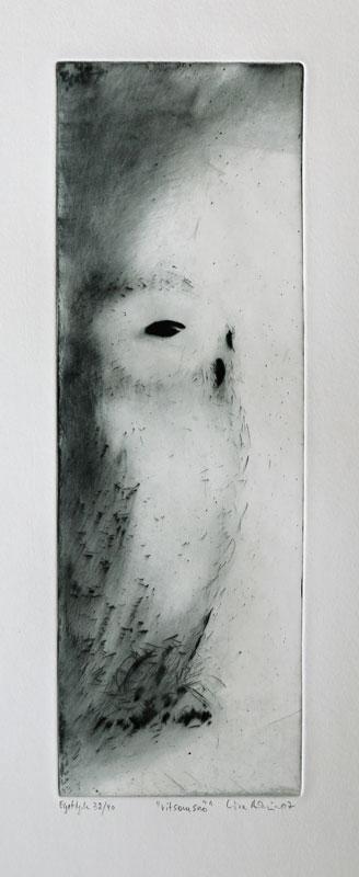 Torrnål Vit som snö av Lisa Andrén