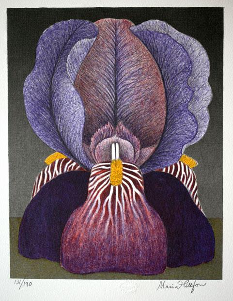 Litografi Iris av Maria Hillfon.