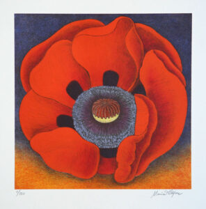 Dark Papaver - Lithograph by Maria Hillfon.