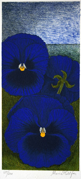 Pansies - Lithograph by Maria Hillfon.