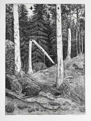 The Aspen Trees - Etching by Eva Holmér Edling.