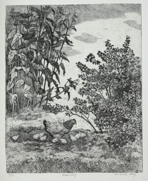 The Triumph of the Hen - Etching by Eva Holmér Edling.