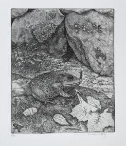 Before the Winter Hibernation - Etching by Eva Holmér Edling.