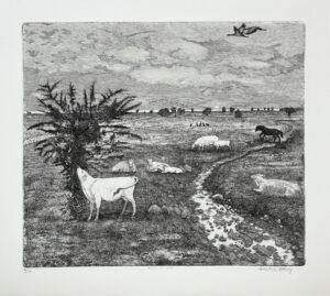 Evening by the Sea - Etching by Eva Holmér Edling.