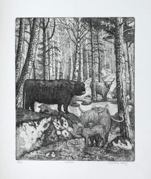Newborn - Etching by Eva Holmér Edling.