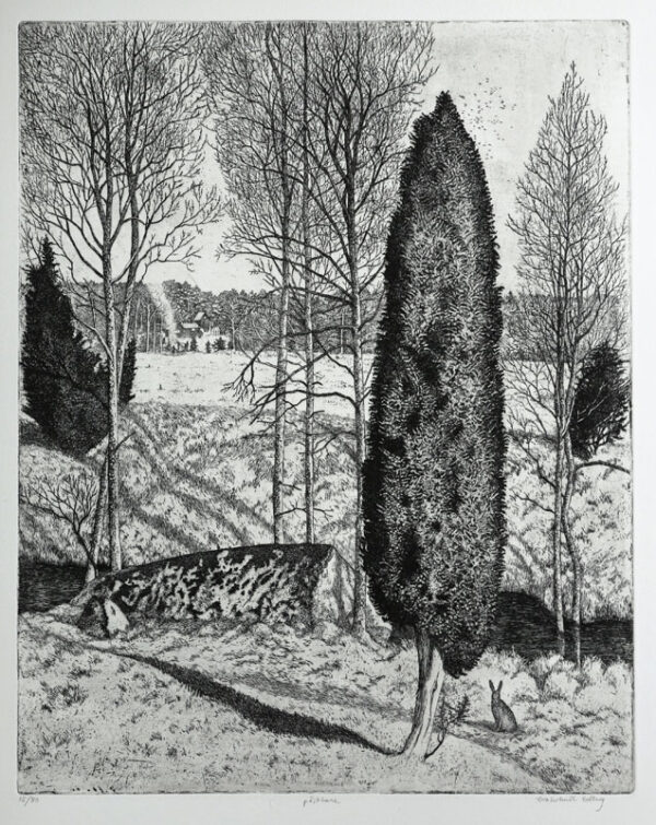 Easter Bunny - Etching by Eva Holmér Edling.
