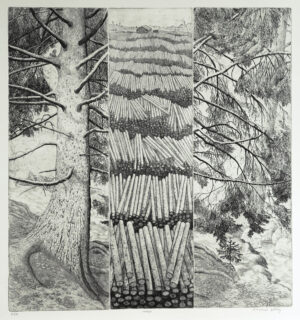 The Forest - Etching by Eva Holmér Edling.