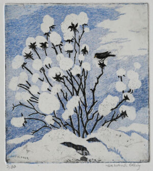 Peony of Snow - Etching by Eva Holmér Edling.