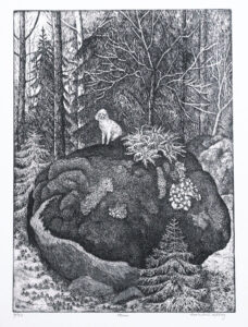 The Stone - Etching by Eva Holmér Edling.