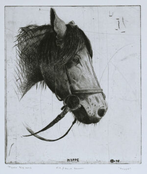 The Horse Moppe - Drypoint by Mikael Kihlman.