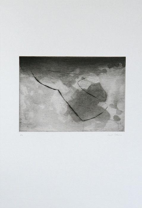 Genom - Torrnål av Curt Asker