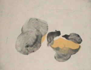 Ode 1 - Hand coloured etching by Lotti Ringström.