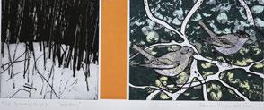 Underbrush - Photogravure/Silk-Screen by Catharina Warme Hellström.