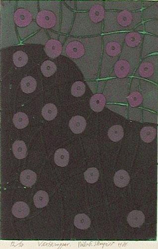 Färgetsning Växtkroppar av Nils G Stenqvist.