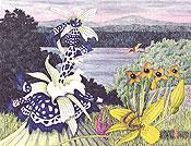 Litografi Rionus Edyx av Karl Axel Pehrson.