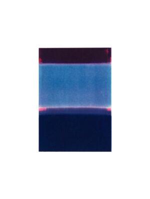 Pigment print Dagbok VIII av Håkan Berg.