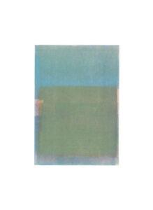 Pigment print Dagbok X av Håkan Berg.
