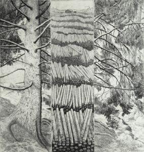 Etsning Skogen av Eva Holmér Edling.