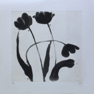 Black Tulip Session 1 - Etching by Pontus Raud.