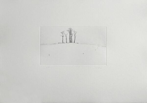 The Grove - Drypoint by Lars Nyberg.