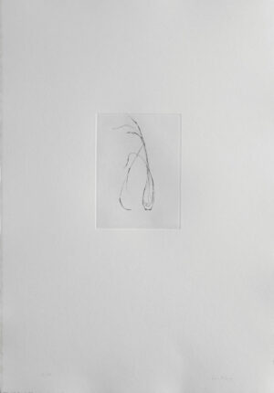 A Grass in a Vase - Drypoint by Lars Nyberg.