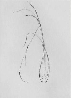Grass in Vase - Drypoint by Lars Nyberg.