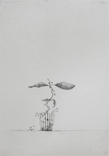 Maev´se Peculiar Plant - Drypoint by Lars Nyberg.