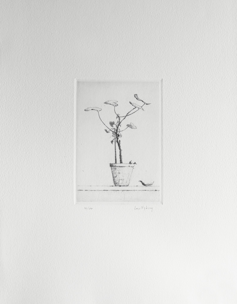 Geranium - Drypoint by Lars Nyberg.