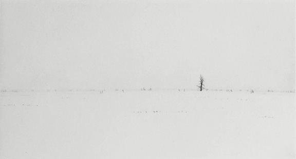 Winter Field - Drypoint by Lars Nyberg.
