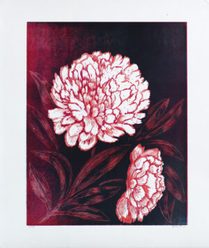 Peony - Woodcut by Peter Ern.