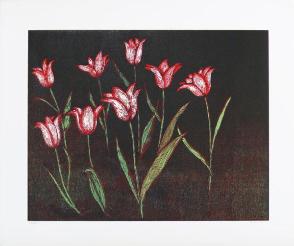 Träsnitt Röda tulpaner av Peter Ern.
