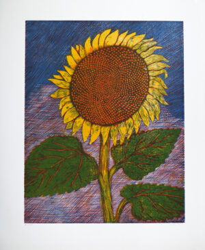 Sunflower - Woodcut by Peter Ern.